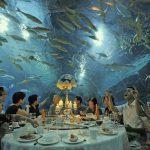 Где пообедать в Китае фото 7