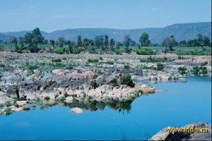 Национальный парк Panna в Индии фото 5