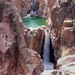 Национальный парк Panna в Индии фото 6